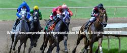 horse racing image_edited.jpg