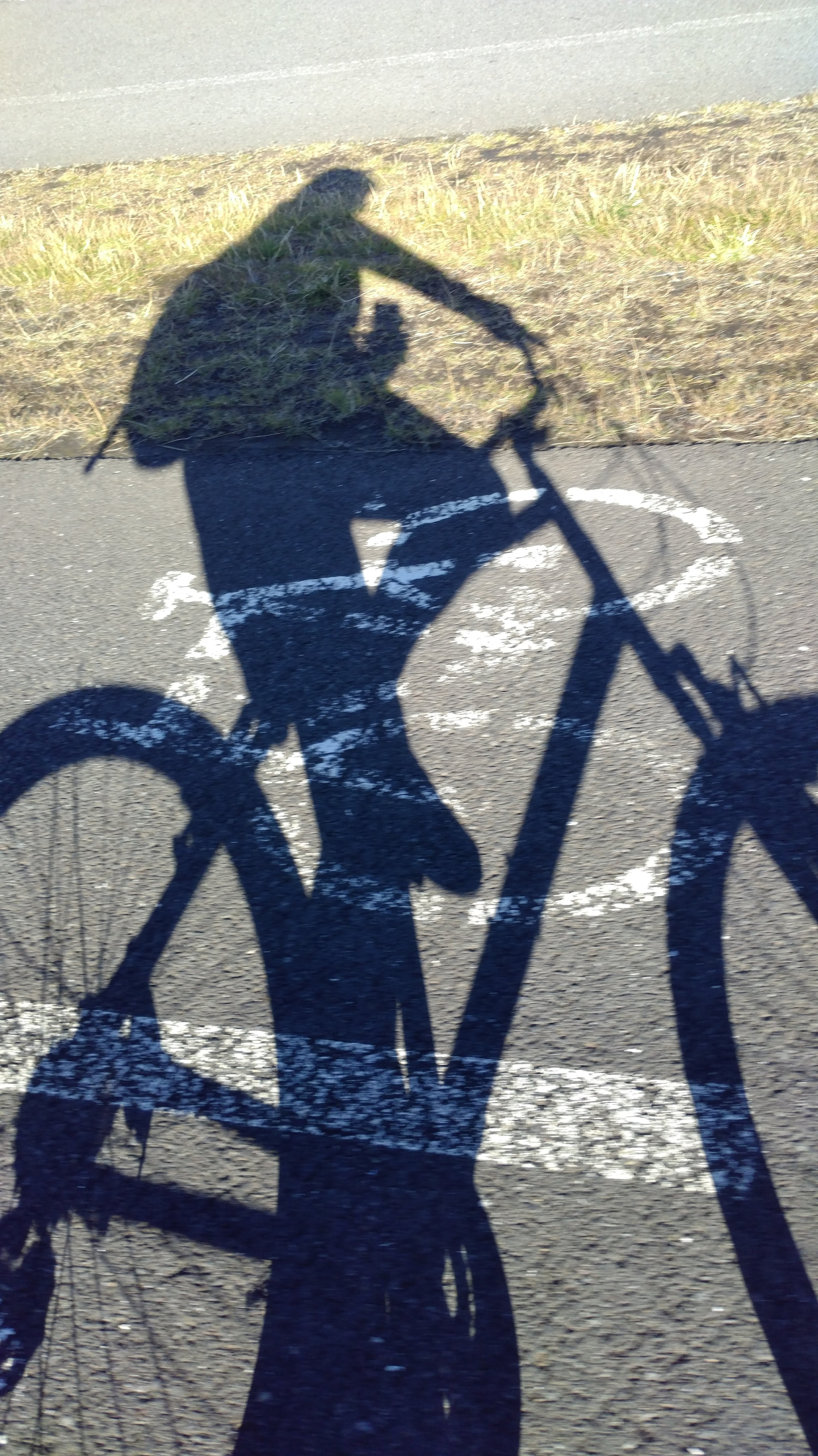 Bikebike