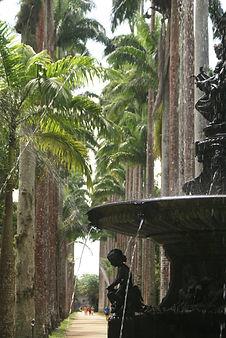 11_Jardim_Botânico.JPG