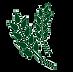 logo icon3.png
