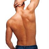 male wax back.jpg