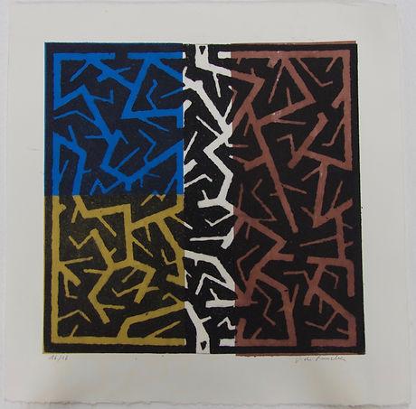 Lichen B, 56 x 56 cm #FDR.jpg