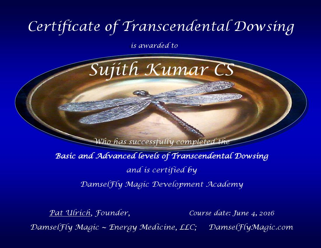 Trancedential Drowsing