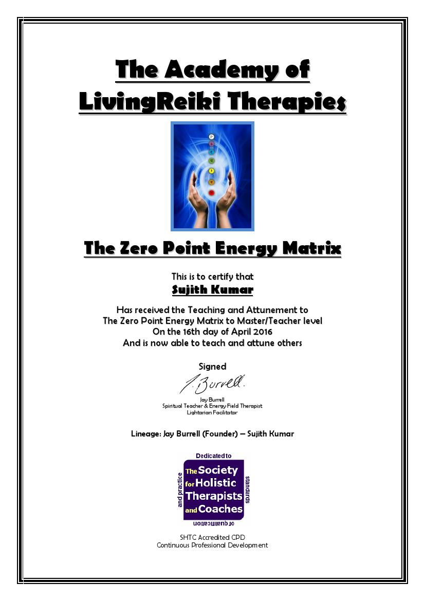 The Zero Point Energy Matrix Certificate with Lineage