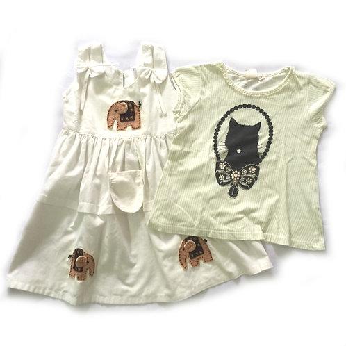 2pcs Size 3-4Yr Girl Dress & Top Bundle
