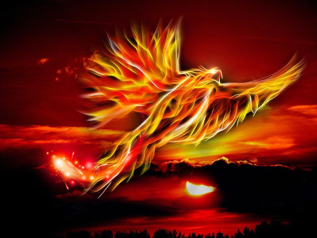 Rise Like the Phoenix You Are