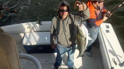 Trophy Season Rockfish