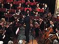 Concert viennois, par Léonard Ganvert.