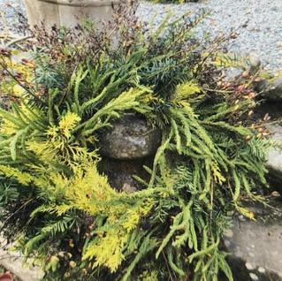 Small Wreath