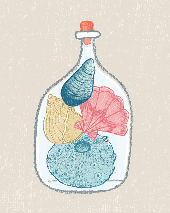 Coloured shells in bottle