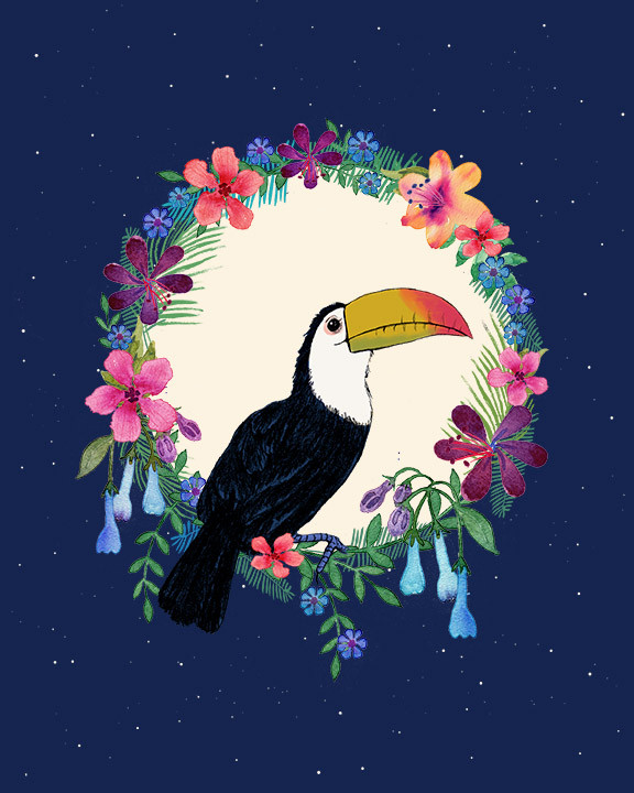 Toucan moon