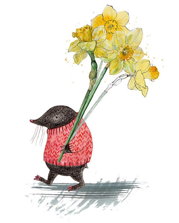 Mole and daffodils