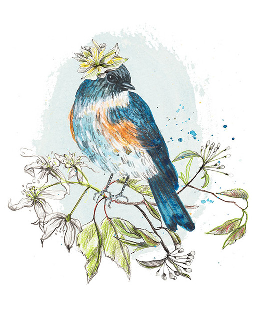 Bluebird and flowers