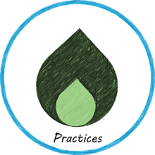 practices logo2.png