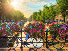 Writers View Amsterdam