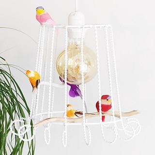 Tinnit_cage_à_oiseaux_4.jpg