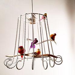 Tinnit_cage_à_oiseaux_2.jpg