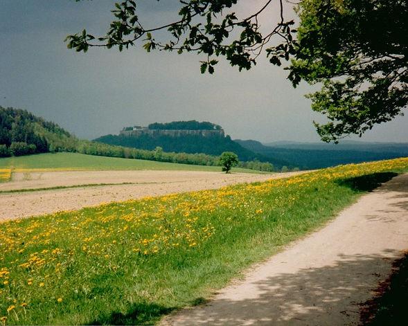 Chemin 06.jpg