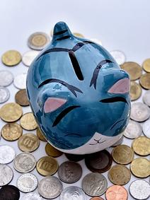 bank-cat.png