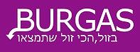 לוגו בורגס בזול