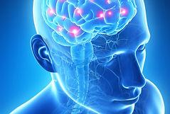neurologo pavia