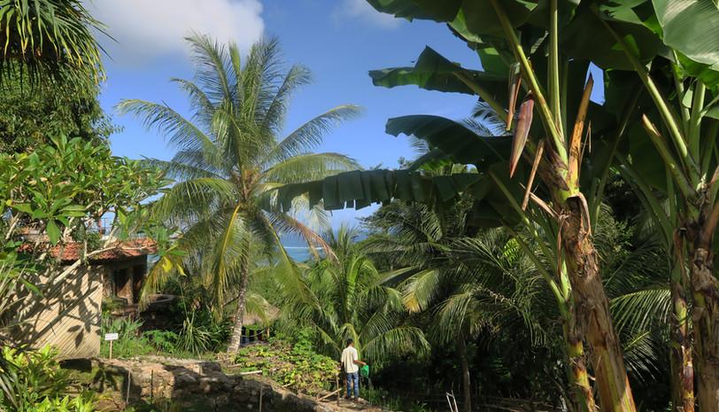 Lombok impressions