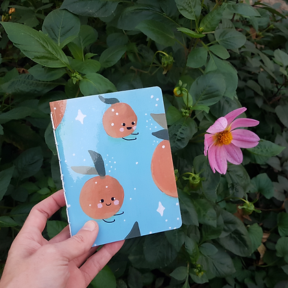 Clementines Notebook