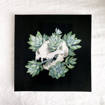 Cat Skull with Succulents, Chloe Jane Gray