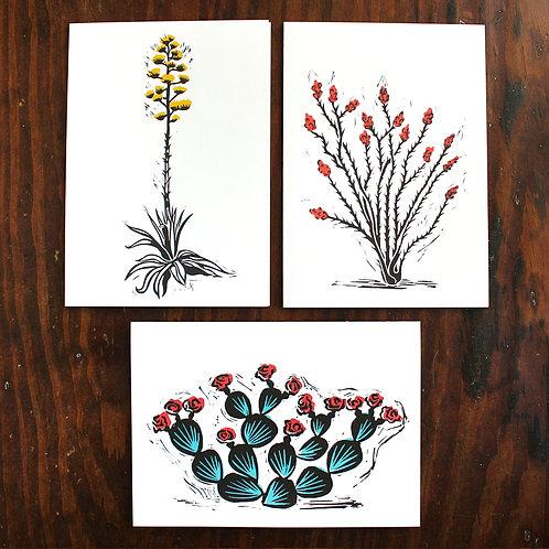 The Wonderful Adventure, desert plant greeting cards