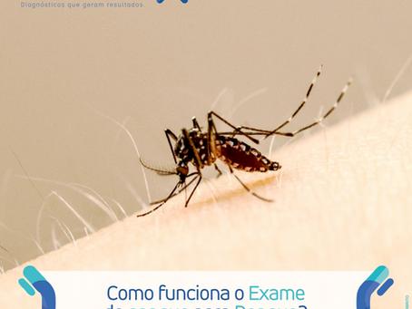 Conheça os sintomas da Dengue e como funciona o exame que detecta esse diagnóstico