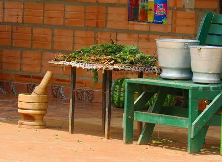 different herbs, leaves and roots to prepare the tereré water