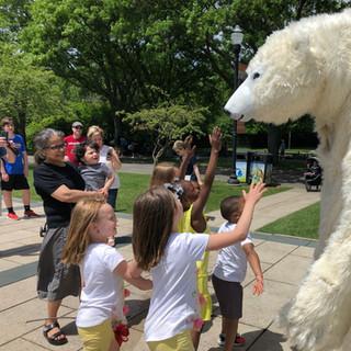 Polar Bear fans