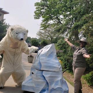 Polar Bear team