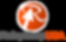 Logo text gris LARGE effect .png