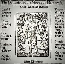 zodiac-man-medical-astrology-1609-M2HYHM