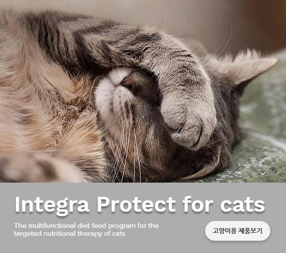 abb-integra-protect-landscape-katzen-2.j