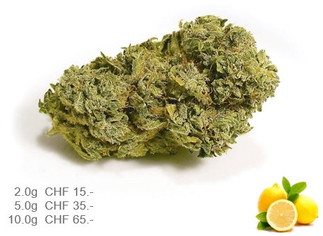 Lemon Haze (Indoor)