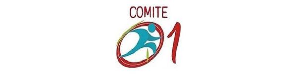 Header-Comité-01.jpg