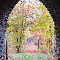 tunnel domplomb.webp