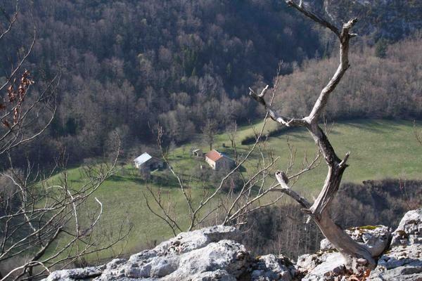 trail de la valserine / la namphée depuis les hauteurs.jpg