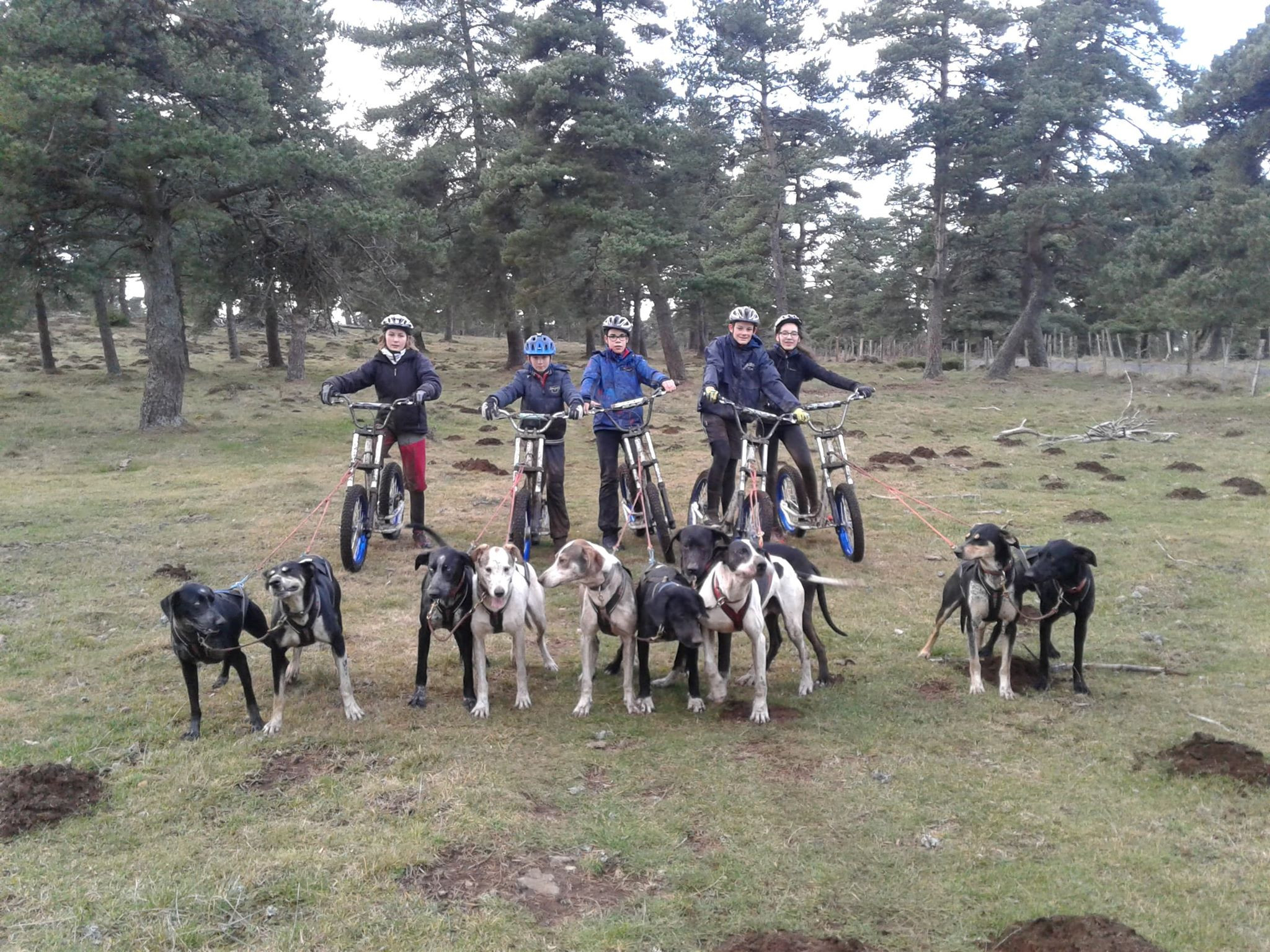Initiation Cani-Trottinette