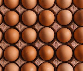 Brow Free Range Eggs
