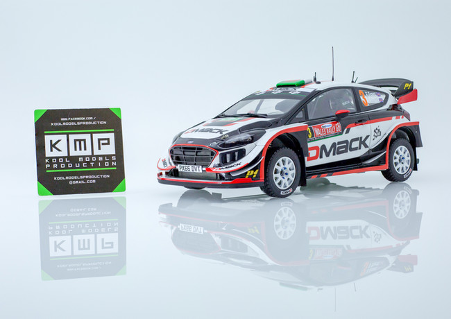 Ford Fiesta WRC + Gravel