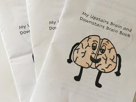 Brain Books for Regulation