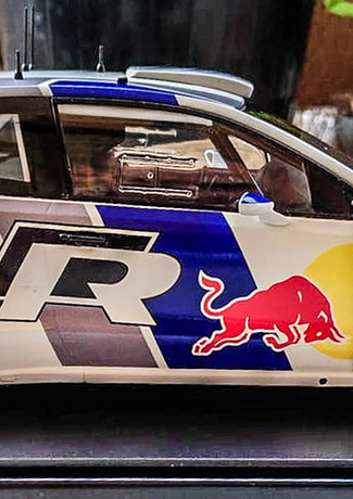 MIchele Cacamo Polo WRC-1.jpg