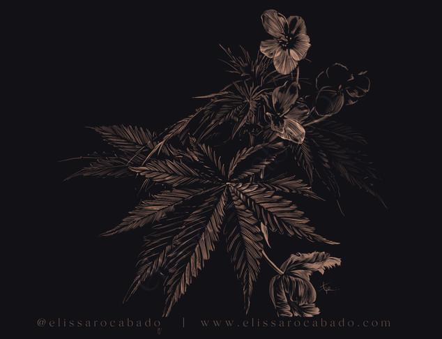 golden herb