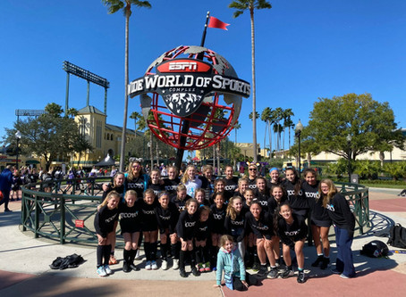 2020 Disney Showcase