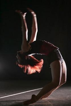 SIBA 2009 show pic