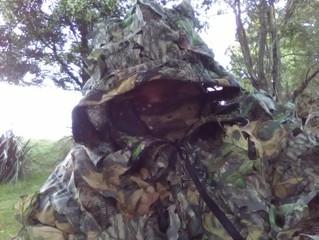 Randall hunting Sambar in Oz