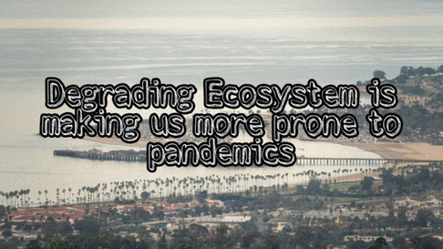 Degrading Ecosystem is making us more prone to pandemics.